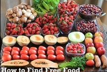 Frugal Food / Ways to save money on food by making it yourself, reinventing leftovers, and more. / by Donna Chapin