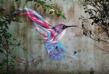 Street Art / by Nancy Sexton Caruso