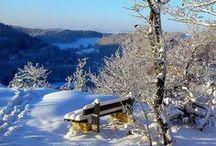 Winter Wonder World
