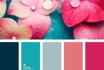 Details - Colours