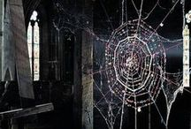Cobweb Couture / A celebration of the spider's handiwork woven throughout decorative arts...