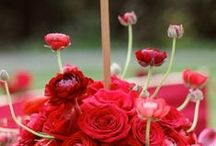 Red Wedding Ideas / Crimson, pink, ruby... All shades of red wedding inspiration.