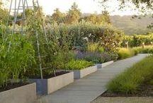 09.Potager, Vegetable_Gardens