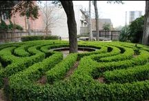 Labyrinth / [adopt the pace of nature: her secret is patience] ralph waldo emerson