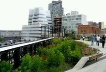 High Line Garden_ New York