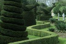 16.Topiary_Gardens