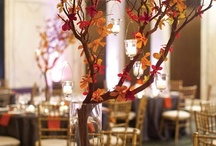 Fall Wedding Venue Decorations / Ideas for my fall wedding.  Fall themed designs and colors (Orange, Gold, Red, Brown, Green).