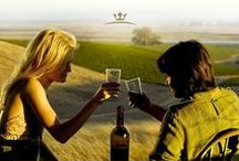 """Filme și vin / Nu numai că vinul este un companion excelent al unei seri cu filme bune, dar mai e ceva: vinul """"joacă"""" de multe ori roluri expresive, în filme de referință. Iată selecția noastră, actualizată pe măsură ce descoperim câte un vin în câte un film."""
