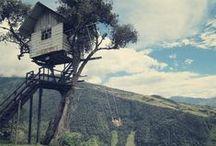 Domki na drzewie / Tree houses