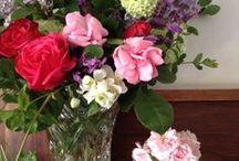 Flower Arranging / 'putting fresh flowers in a vase always brings joy'