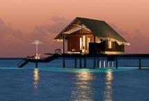 ~ Ideal House ~