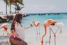 Paradise / #Luxury #dream #paradise #beach #ocean #sun