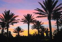 Orlando / Orlando, Florida, USA