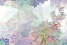 Pastels / Pastels