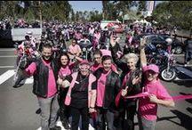 2013 Pink Ribbon Ride / Great shots from Pink Ribbon Motorcycle Ride - 13th October 2013