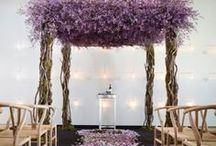 Wedding / by Tara Wright