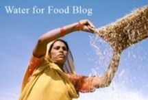 Water for Food Global Institute