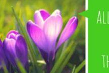 Voorjaar en pasen / Leuke rekenopdracht voor pasen