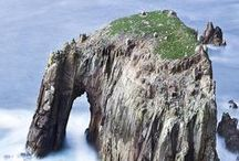 Nature wonders / Beautiful places, plants, rock formations and creatures all over the world