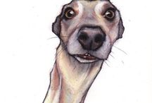 Whippets and Greys in art and life