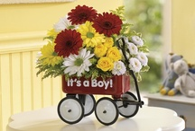 Baby! / The birth of a child means a renewed commitment to the profound promise of life. Celebrate this glorious occasion with beautiful and fresh flowers that show your joy and excitement.