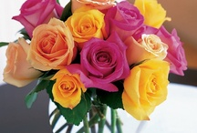 Get Well  / When a friend, loved one, neighbor, or colleague is under the weather, cheer them up by sending beautiful get well flowers. A lovely bouquet or fresh flower arrangement sends a thoughtful message that you are thinking of this person and wishing them a speedy and full recovery.