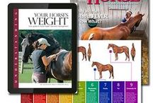 The Horse Gifts & Gear / Find the perfect gifts and gear for horse owners at shop.thehorse.com! #horses #horsegifts