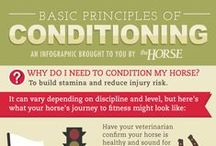 Sport Horse Health / Information for keeping your performance horse healthy and fit. You can find more sports medicine info at http://www.thehorse.com/topics/sports-medicine