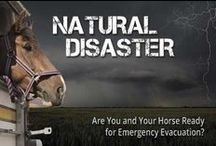 Equine Emergencies / Get more information about preparing for equine emergencies with our 911 blog (http://cs.thehorse.com/blogs/horse-911-whats-your-emergency/default.aspx)