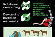 Equine Parasite Control and Deworming / Information about parasite control and deworming in horses.