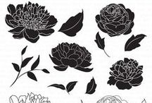 Wild Peonies Stamp Set / Projects showcasing our Wild Peonies set.