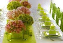 Tablescapes & Venue designs / by Catherine Cardoso
