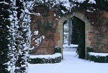 # Dans mon jardin d'hiver #