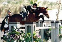 Horseback riding courses / We are in the process of designing new stables which should be ready by fall of 2015. The new riding environment will simply be amazing. Our 1 year course will be available to only 10 ladies 18-23 years old who wish to pursue a professional career around horses and will provide top level training in dressage and show jumping. ***** Details of this course will be published later but we strongly suggest you email us a non binding indication of interest.
