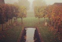 # W jesiennym ogrodzie | in the autumn garden #