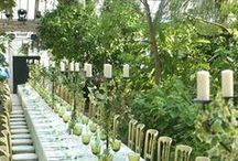 Botanic Wedding