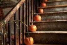 * Jesienią ... | in autumn ... *