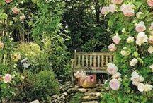 Kert, kertészkedés