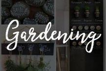 Chalk Art for Gardening / Organize your beautiful garden with chalkboard inspired garden designs.