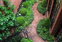 # Ogrody miejskie | urban gardens #