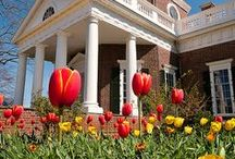 Thomas Jefferson's Monticello / Pins from our partner site: Thomas Jefferson's Monticello.  Charlottesville, VA  http://www.monticello.org/ / by American Heritage Chocolate