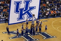 University Of Kentucky Wildcats / by Paul Greene