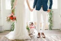 Wedding / Incorporate your dog in your wedding.   Ring Bearer Dog. Flower Dog.  Best Dog. Save the Date Dog. Dog Wedding / by PuppyInMotion.com
