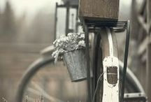 Bikes, baskets & flowers / Some beautiful pictures of bikes in a country setting.