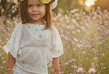 Wildflowers & Meadows