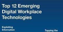 Intranet/Digital workplace