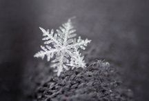 Snowflake / The beauty of snowflakes.