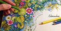 Laminas para Colorear / Dibujos para colorear y colorear gratis para niños y adultos.