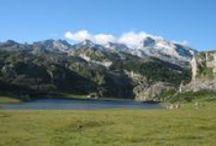 Los Picos de Europa / Se caracteriza por sus formaciones calizas, simas, paredes verticales y agrestes crestas, y destaca por la altitud de sus cimas tan próximas al mar Cantábrico. De los tres macizos que forman Los Picos de Europa el macizo Occidental o del Cornión, donde se encuentran los lagos de Covadonga y las Peñas Santas. Cabe destacar la Garganta del Cares, desfiladero que une Asturias con León, y que separa el Macizo Occidental del Central y Oriental.