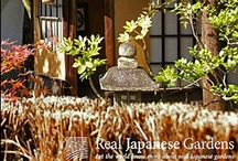 Tea and Tea Gardens / by Real Japanese Gardens